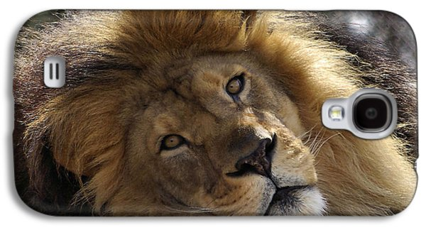 Close Photographs Galaxy S4 Cases - Majestic Love Galaxy S4 Case by Linda Mishler