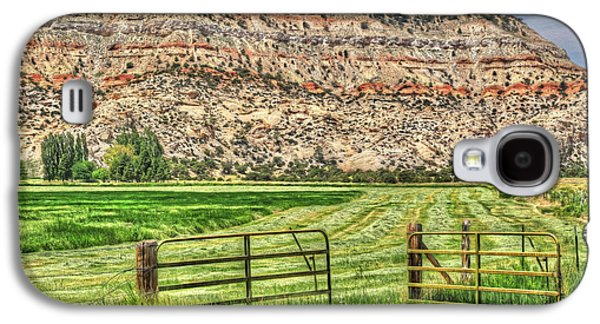 Hayfield Galaxy S4 Cases - Make Hay While the Sun Shines Galaxy S4 Case by Donna Kennedy