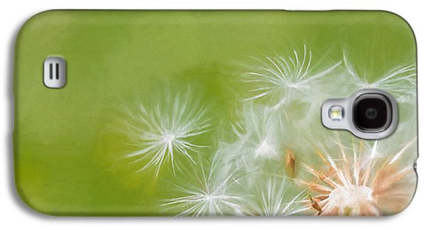 Weed Line Galaxy S4 Cases - Making Wishes Dandelion Galaxy S4 Case by Terry DeLuco