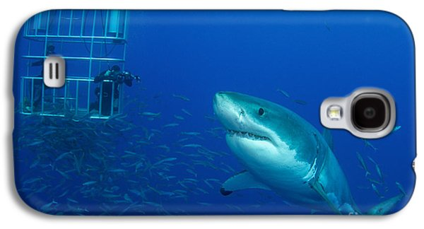 Schools Of Fish Galaxy S4 Cases - Male Great White Shark And Divers Galaxy S4 Case by Todd Winner