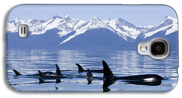 Printscapes - Galaxy S4 Cases - Many Orca Whales Galaxy S4 Case by John Hyde - Printscapes