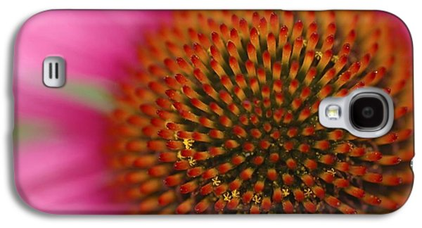Studio Photographs Galaxy S4 Cases - Maria Kraszynska - Botanical Images Galaxy S4 Case by Maria Kraszynska