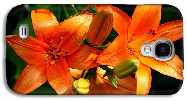 Botanical Galaxy S4 Cases - Marmalade Lilies Galaxy S4 Case by David Dunham