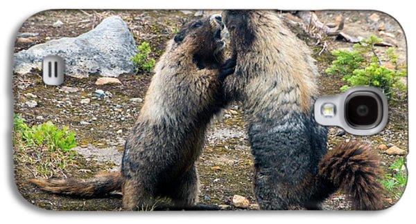 Marmot Battle Galaxy S4 Case by Mike Dawson