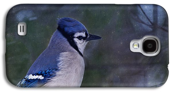 Me Minus You - Blue Galaxy S4 Case by Evelina Kremsdorf