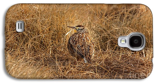 Meadowlark Hiding In Grass Galaxy S4 Case by Robert Frederick