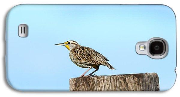 Meadowlark Roost Galaxy S4 Case by Mike Dawson