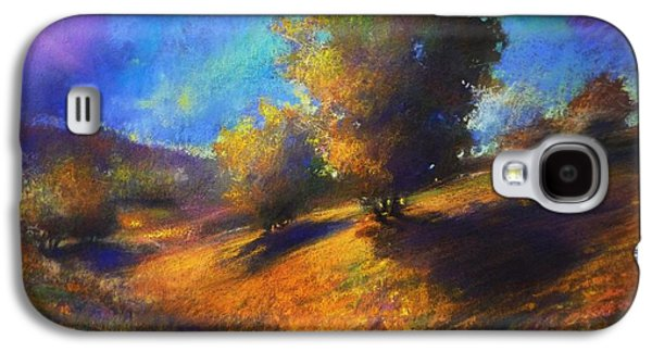 Contemplative Pastels Galaxy S4 Cases - Middle Hylands Meadows Galaxy S4 Case by Paul Birchak
