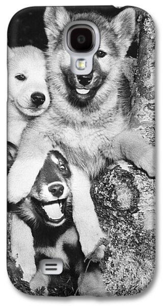 Mischievous Pups Galaxy S4 Case by M E Browning