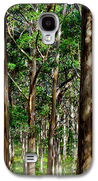Green Galaxy S4 Cases - Mist In The Forest Galaxy S4 Case by Az Jackson