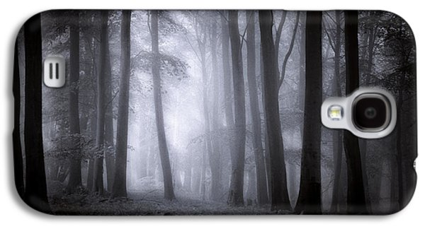 Landscapes Photographs Galaxy S4 Cases - Misty Forest Galaxy S4 Case by Ian Hufton