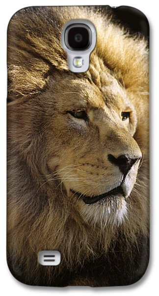 Headshot Galaxy S4 Cases - Mm-2-6, Lion, Front Head Shot Galaxy S4 Case by Rebecca Grambo