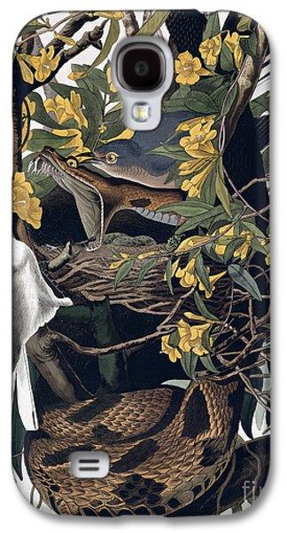 Mocking Birds And Rattlesnake Galaxy S4 Case by John James Audubon