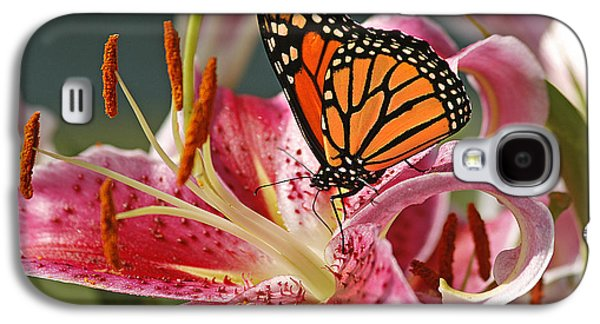 Maine Meadow Galaxy S4 Cases - Monarch on a Stargazer Lily Galaxy S4 Case by Cindi Ressler