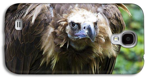 Monk Vulture 3 Galaxy S4 Case by Heiko Koehrer-Wagner