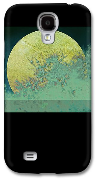 Moon Digital Galaxy S4 Cases - Moon Magic Galaxy S4 Case by Ann Powell