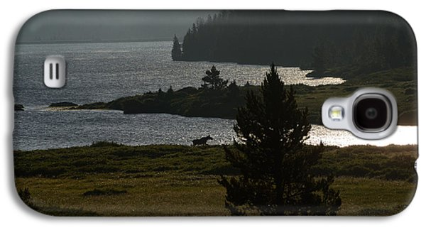 Fort Collins Galaxy S4 Cases - Moose at the Waters Edge Galaxy S4 Case by Tranquil Light  Photography