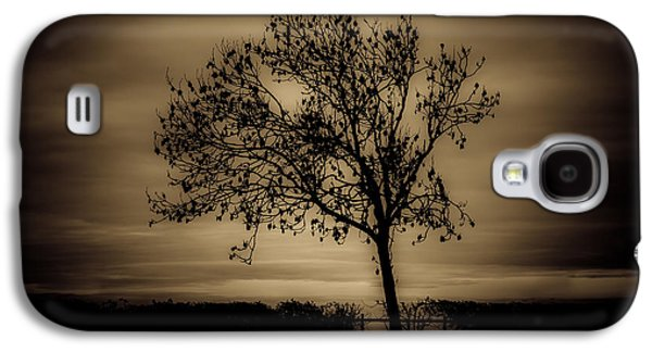 Light Galaxy S4 Cases - Morning silhouette Galaxy S4 Case by Chris Fletcher