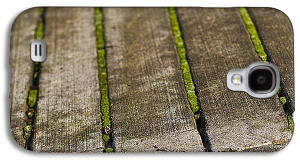 Moss Galaxy S4 Cases - Moss Lines Galaxy S4 Case by Rebecca Cozart