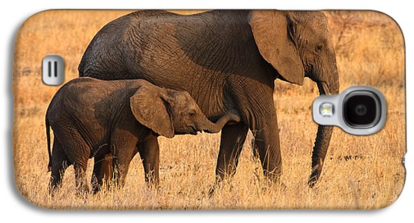 Nature Study Photographs Galaxy S4 Cases - Mother and Baby Elephants Galaxy S4 Case by Adam Romanowicz