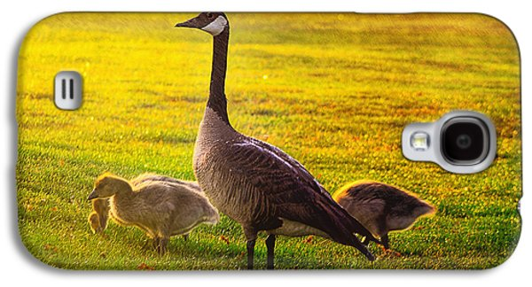 Mother Goose Galaxy S4 Cases - Mother Goose color Galaxy S4 Case by Camille Lopez