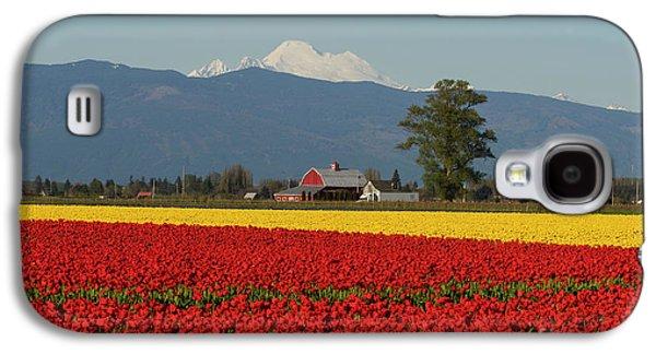 Mount Baker Skagit Valley Tulip Festival Barn Galaxy S4 Case by Mike Reid