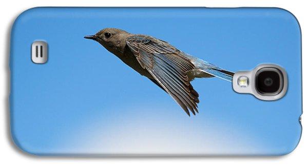Glides Galaxy S4 Cases - Mountain Bluebird Glide Galaxy S4 Case by Mike Dawson