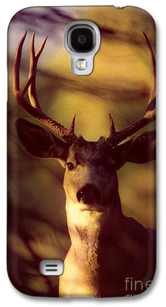 Strong America Galaxy S4 Cases - Mule Deer Galaxy S4 Case by John Hyde - Printscapes