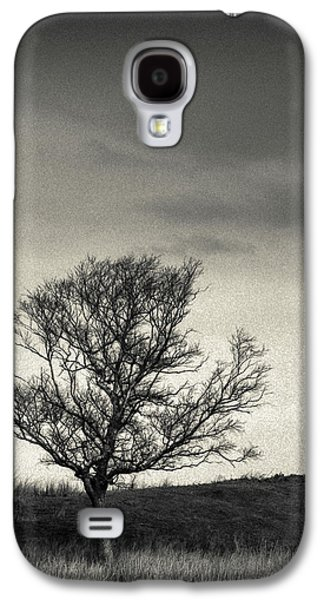 Mull Tree Galaxy S4 Case by Dave Bowman