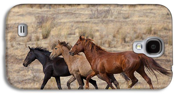 Wild Horse Galaxy S4 Cases - Mustang Trio Galaxy S4 Case by Mike  Dawson