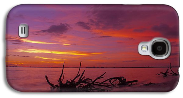 Tree Roots Galaxy S4 Cases - Mysterious Sunset Galaxy S4 Case by Melanie Viola