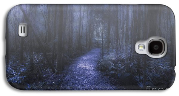 Mystery Pathway Galaxy S4 Case by Jorgo Photography - Wall Art Gallery