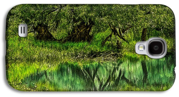 Mystical Landscape Mixed Media Galaxy S4 Cases - Mystic Woods Reflection Pond Galaxy S4 Case by Joel Bruce Wallach