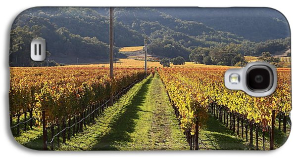 Pastoral Vineyards Galaxy S4 Cases - Napa Valley Vineyard . 7D9020 Galaxy S4 Case by Wingsdomain Art and Photography
