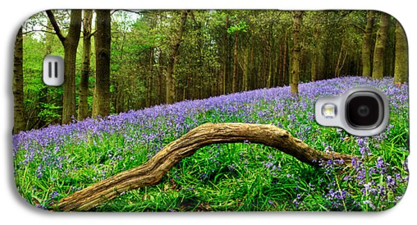 Spring Scenery Galaxy S4 Cases - Natural Arch and Bluebells Galaxy S4 Case by John Edwards