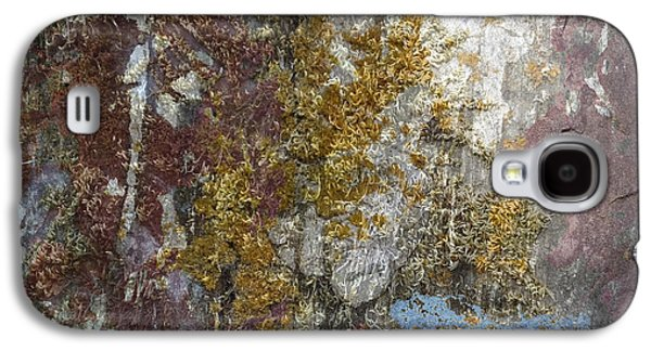 Abstract Nature Galaxy S4 Cases - Natural Lichens Galaxy S4 Case by Lyn  Perry