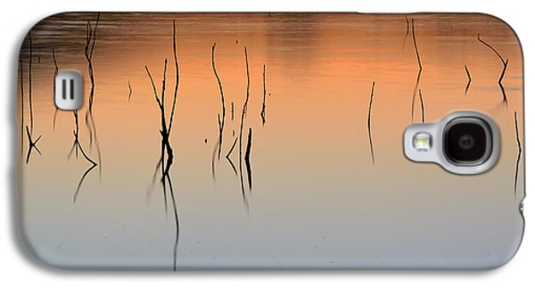 Abstract Landscape Galaxy S4 Cases - Nature Graphics  Galaxy S4 Case by Guido Montanes Castillo