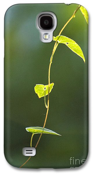 Studio Pyrography Galaxy S4 Cases - Nature Simplicity in Green Galaxy S4 Case by ArtyZen Studios - ArtyZen Home