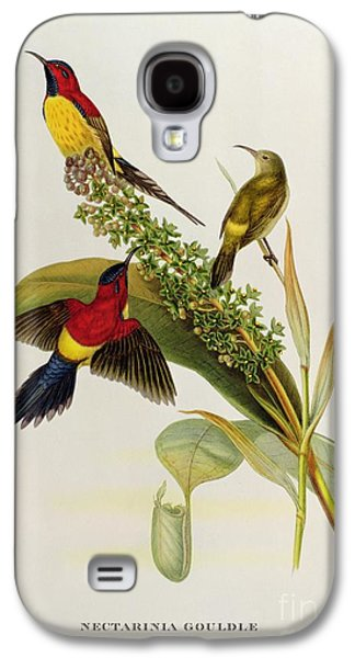 19th Galaxy S4 Cases - Nectarinia Gouldae Galaxy S4 Case by John Gould