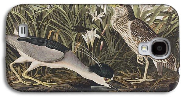 Night Heron Or Qua Bird Galaxy S4 Case by John James Audubon