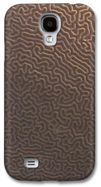 Nature Abstract Galaxy S4 Cases - No Way Out Galaxy S4 Case by Joseph Quig