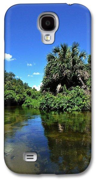 Landscape Acrylic Prints Galaxy S4 Cases - Ocala Forest Galaxy S4 Case by Sheri McLeroy