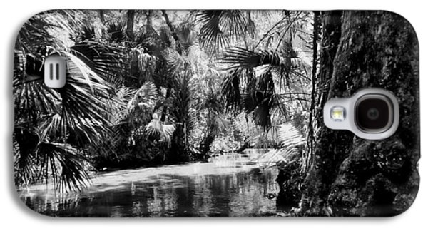 Landscape Acrylic Prints Galaxy S4 Cases - Old Florida Springs Galaxy S4 Case by Sheri McLeroy