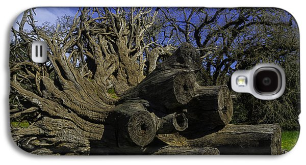 Old Tree Roots Galaxy S4 Case by Garry Gay