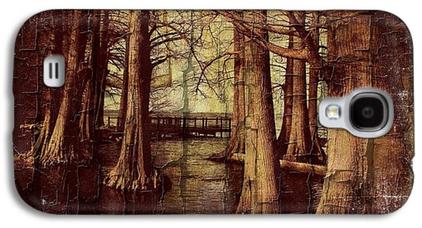 Old World Reelfoot Lake Galaxy S4 Case by Julie Dant