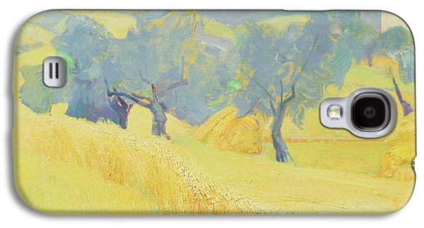 Olive Trees In Tuscany Galaxy S4 Case by Antonio Ciccone