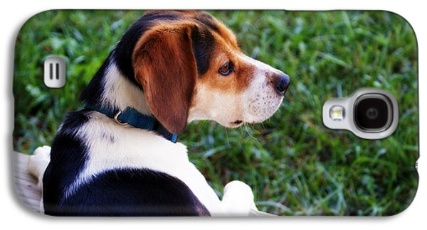 Guard Dog Galaxy S4 Cases - On High Alert Galaxy S4 Case by Cricket Hackmann