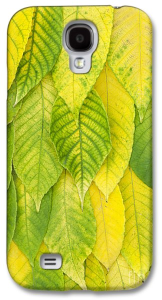 Green Galaxy S4 Cases - On The Turn Galaxy S4 Case by Tim Gainey