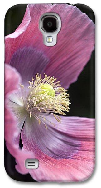 Botanical Galaxy S4 Cases - Opium Poppy - Papaver Somniferum Giganteum Galaxy S4 Case by Frank Tschakert