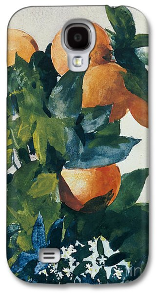 Oranges On A Branch Galaxy S4 Case by Winslow Homer